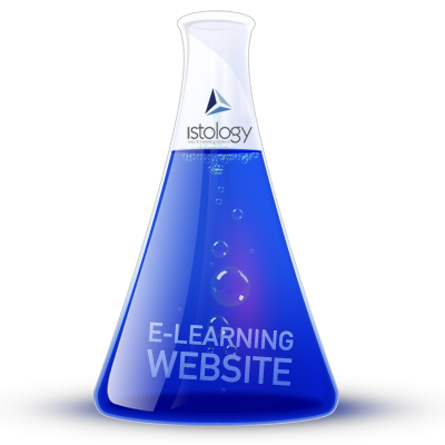 e-Learning Website